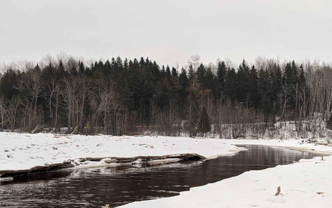 Voyageur's Club: Intro to Winter Camping Jan 21-23