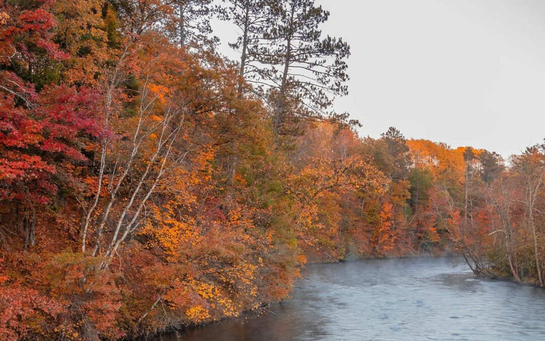 Voyageur's Club: Fall Colors Canoe Trip Oct 1-3
